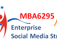 Enterprise Social Media Strategy Course